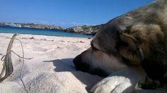 Lampedusa magica foto | Lampedusa Magica