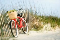 bicycles on the beach pics | ... is by bike fat tire bikes is pleased to offer you several biking