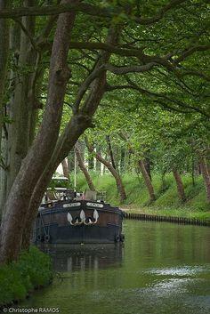 Le canal du Midi, Aude, Burgundy, France
