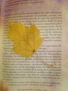 Fue casualidad que pusiera a secar esa hoja de otoño  en esa página de ese libro. Leaves, Autumn Leaves, Make Envelopes, Book