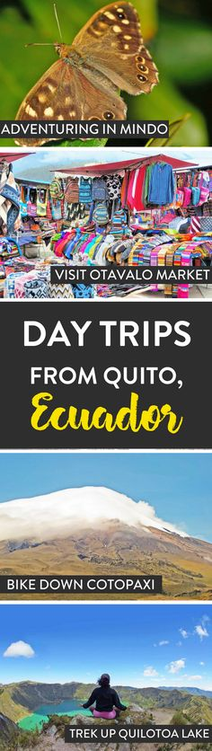 Ecuador | Looking for things to do around Quito? Here are a few of our top day trips that we recommend doing while in the area.