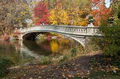 Herbststimmung, herrliches farbenfreudiges Bild