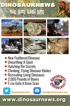 THIS WEEK - New Feathered Dinosaur * Unearthing A Giant * Hatching the Secrets * Climbing, Flying Dinosaur Babies * Recreating Living Dinosaurs http://www.dinosaurnews.org ‪#‎dinosaurs‬ ‪#‎news‬ ‪#‎dinosaurnews‬