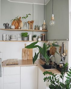 Where to go for the best plant delivery services in Los Angeles including our top picks for pet friendly, low-light tolerant, minimal care plants. Slow Living, Home And Living, Simple Interior, Interior Design, Earthy Home, Flower Bar, Indoor Plant Pots, Home And Deco, Küchen Design