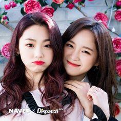 Gugudan - Kim Sejeong and Kang Mina Kpop Girl Groups, Korean Girl Groups, Kpop Girls, Kim Chungha, Jung Chaeyeon, Choi Yoojung, Jellyfish Entertainment, K Pop Star, Sistar