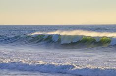 Cresting wave in late afternoon sun - Ventura, California.