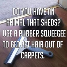 How to Get Pet Hair Out of Carpets