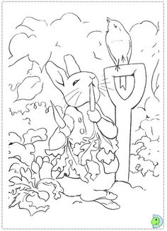 realistic rabbit coloring pages BUNNIES Pinterest
