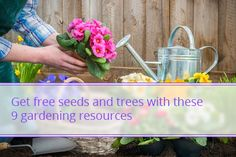 Replenish Your Garden for Free with Seeds, Trees and More