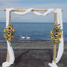 Are you thinking about having your wedding by the beach? Are you wondering the best beach wedding flowers to celebrate your union? Here are some of the best ideas for beach wedding flowers you should consider. Aisle Runner Wedding, Beach Wedding Reception, Beach Wedding Flowers, Beach Wedding Photos, Beach Wedding Decorations, Wedding Table Centerpieces, Wedding Arches, Wedding Ceremony, Creative Wedding Favors