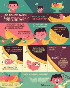 De donde llegan esas mosquitas de la fruta Teaching Themes, Learning Resources, Weird Facts, Fun Facts, Curious Facts, Ap Spanish, Interesting Topics, Interesting Stuff, Med Student