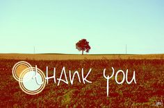Happy First Blog Anniversary! www.inspirationook.com  #ThankYou