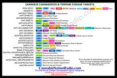 Chart with cannabinoid terpenes and disease targets.