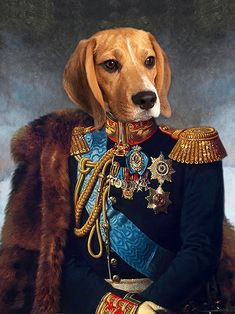 Portraits From Photos, Portrait Images, Dog Portraits, Royal Animals, Magazine Collage, Dog Poses, Cute Dog Pictures, Dog Illustration, Smiling Dogs