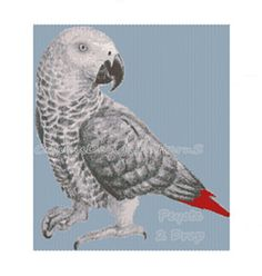 AFRICAN GRAY PARROTPeyote 2 by CajunsDesignPatternS on Etsy, $12.00
