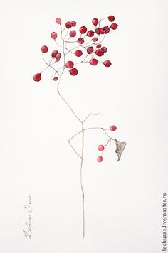 Red berries. Traditional art ( watercolor). Prof. paper: Canson Fontenay 300 g/м2 (cotton). Svetlana Markina (LechuzaS) Size: 20cm*30cm