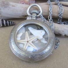 Pocket watch with sea star, sea glass, and sharks teeth.