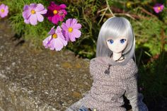 Smart Doll Chitose Shirasawa by kaz04032