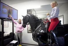 Ratsastussimulaattori @Equstomin Opet #ratsastus #ratsastussimulaattori #Equstom #simulator Gym Equipment, Horse, Bike, Sports, Bicycle, Hs Sports, Horses, Bicycles, Workout Equipment