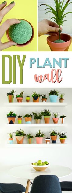 I had hung 3 floating shelves above the dining room table and they were in desperate need of some decorations. I debated between rainbow dishware but ultimately settled on turning it into a DIY Succulent Wall and am so glad that I did! Diy Room Decor For Teens, Arts And Crafts For Teens, Teen Room Decor, Bedroom Decor, Teen Crafts, Art Crafts, Wood Crafts, Bedroom Ideas, Teen Wall Art