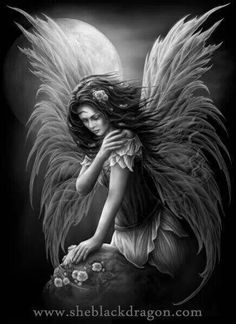 Black and white Fairy