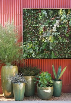 this vertical wall garden is so cool, got to see it in person when I was visitng my sister.  Found some stuff at Colasanti's today that looks like it is meant to do this, may have to try on my deck this summer!!  Put some herbs and flowers in it, it's living art work!!
