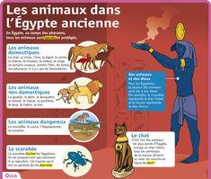 Fiche exposés : Les animaux dans l'Égypte ancienne