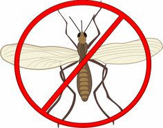 Learn how to get rid of gnats in house or outdoors. Here we will see how to kill or control gnats using Gnat Traps, Sprays, Repellents, and more. 30+ Tips.