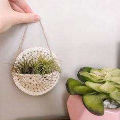 Diy Hanging Planter Macrame, Crochet Plant Hanger, Air Plants Care, Air Plant Display, Small Succulents, Pocket Pattern, Plant Nursery, Plant Holders, Diy Kits