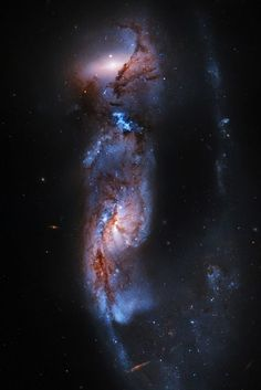 Arp 81 - Hubble Legacy Archive Based on observations made with the NASA/ESA Hubble Space Telescope, and obtained from the Hubble Legacy Archive, which is a collaboration between the Space Telescope. Carl Sagan, Cosmos, Space Planets, Space And Astronomy, Space Photos, Space Images, Pictures Of Outer Space, Formation Photo, Star Formation