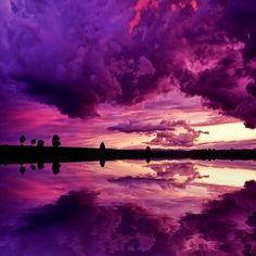 Magenta skies