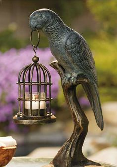 This handsome parrot stepped out of his cage to set the scene with candlelight.