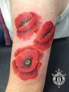 Very nice realistic poppies tattooed in the studio by Greg. His diary is filling up fast call 07963606034 or message our page for info and availability. www.holytrinitytattoos.co.uk