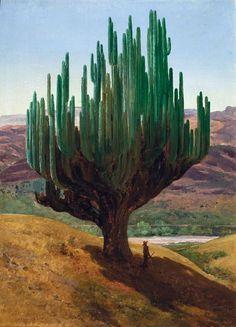 "cuerpodepaz: ""El Cardon - José María Velasco (1877) The Candelabra - the largest cactus in the world! Found here in the Valley of Tehuacán-Cuicatlán. """
