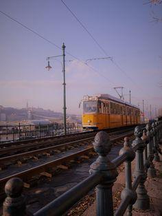 #tram #transport