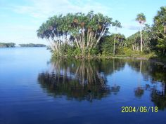 Carimagua Lake at the East Plains or Llanos orientales, Colombia