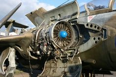 Military Jets, Military Aircraft, Blackburn Buccaneer, South African Air Force, Aircraft Maintenance, East Yorkshire, Royal Navy, Sci Fi Fantasy, Great Britain