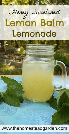 Honey-Sweetened Lemon Balm Lemonade - The Homestead Garden Lemon Balm Recipes, Herb Recipes, Real Food Recipes, Potato Recipes, Refreshing Drinks, Summer Drinks, Cold Drinks, Detox Drinks, Healthy Drinks