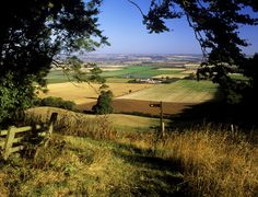 View from the Yorkshire Wolds Trail (England)