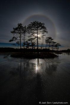 Bog Island in the Moonlight   by jaakphoto   http://ift.tt/YsLF2J