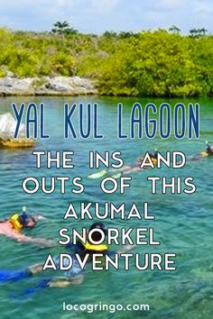 Akumal is known for snorkeling with the turtles, but is also home to Yal Ku lagoon, which offers a unique snorkeling adventure in the Riviera Maya