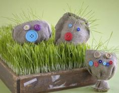 How to Grow a Friendly Face-Instead of growing grass or seeds in a Styrofoam cup this spring, invite students to create their own stuffed friends—and observe as each begins to sport a signature spiky green 'do.    | Scholastic.com