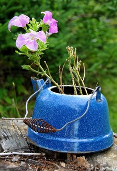 Kettle #planter | The Micro Gardener @ www.themicrogardener.com