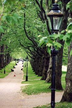 Hyde Park. London, England.