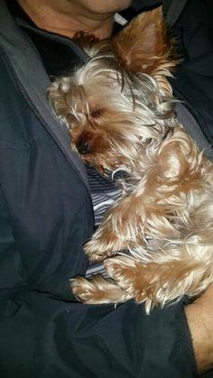 Awwww sleepy head