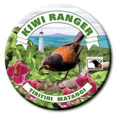 Kiwi Ranger programme now available on Tiritiri Matangi Walking In Nature, Scouts, Kiwi, Conservation, Walks, New Zealand, Ranger, Wildlife, Explore