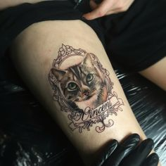 Colour realism cat tattoo. Done by Adam Thomas from Marked One Tattoo & Gallery