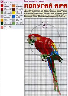 Borduurpatroon Kruissteek Papegaai - Parkiet *Cross Stitch Pattern Parrot ~Ara *Macaw~