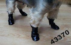 Pelo* Buty dla psa gruba mieciutka eco-skóra   R-S