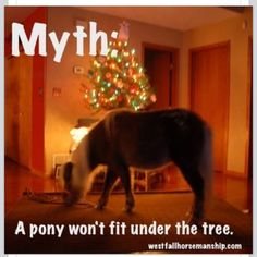 I can fit a pony, a miniature horse, AND a mini donk under my tree.  The full sized horses won't fit - unless I take the tree outside!  (DONE.)